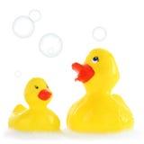 Canards jaunes en caoutchouc de mère et d'enfant Photographie stock libre de droits