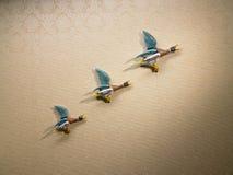 Canards propulsés par fusée Images stock