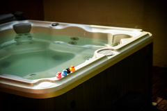Canards sur le jacuzzi photo stock