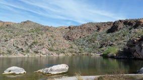 Canards sur le lac Photographie stock libre de droits
