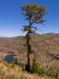 canaria granu góry Fotografia Royalty Free