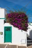 Canarian房子细节兰萨罗特岛西班牙 免版税库存照片