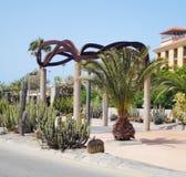 Canarian植被街道,西班牙 免版税库存照片