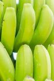 Canarian banana. Canarian banana from La Palma island (Spain Royalty Free Stock Image