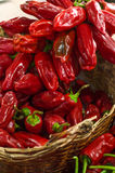 Canarian dry red pepper. Stock Photography