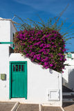 Canarian house detail Lanzarote Spain Royalty Free Stock Photo