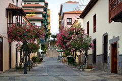 Canarian town Royalty Free Stock Image