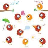 Canaries bird set Royalty Free Stock Images