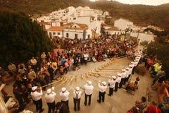 CANARINO DI EUROPA SPIAN GRAN Fotografia Stock Libera da Diritti