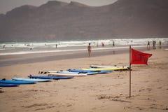 Canario de Lanzarote de la playa de Famara fotos de archivo libres de regalías