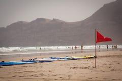 Canario de Lanzarote de la playa de Famara fotografía de archivo libre de regalías