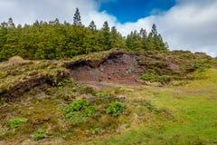 Canario laguna Zadziwiający krajobraz w Azores wyspach w Port zdjęcia stock