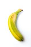Canarische banaan Royalty-vrije Stock Afbeeldingen