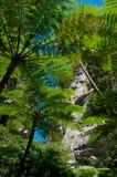 Canarvonkloof Australië stock afbeeldingen