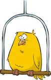 Canary. Yellow canary sitting on a pole vector Stock Photos