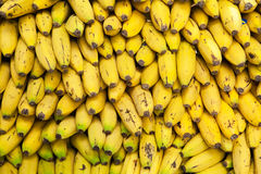 Canary bananas in a pile at market. Yellow texture background. Stock Photos