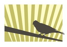 Canary bird 2. Canary bird silhouette with geometric background Royalty Free Stock Photography