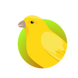 Canary Flat Design Vector Illustration Royalty Free Stock Photography