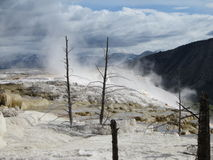 Canary hot spring Stock Photography