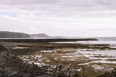 Canary island. Volcanic island - coast and atlantic ocean Stock Photo