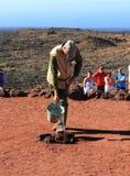 Canary Islands, Lanzarote/Timanfaya National Park: Tourism - Creating a Geyser Stock Image
