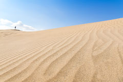 Canary islands, Maspalomas. Spain. Sand dunes. Royalty Free Stock Photo