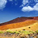 Canary islands in Tenerife Teide National Park Stock Image