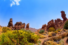 Canary islands in Tenerife Teide National Park Royalty Free Stock Image