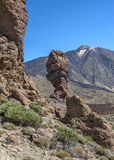 Canary Islands , Tenerife, volcano Teide. Rock the finger of God Stock Images