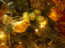 Canary ornament Royalty Free Stock Photos