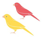 Canary. Set. Bird. Royalty Free Stock Images