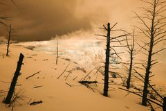 Free Canary Spring In Infrared, Mammoth Hot Springs, Yellowstone Nati Stock Photos - 110339383