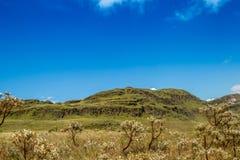 Canastra Brésil de serra de parc national Photographie stock libre de droits
