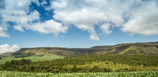 Canastra Brésil de serra de parc national Images libres de droits
