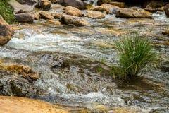 Canastra en pierre du DA de serra de parc national de rivière photos libres de droits