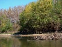 Canaux naturels de bâtiment du Danube 5 photo libre de droits