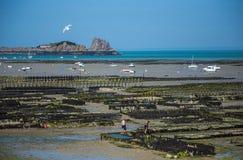 Cancale, Bretagne, Frankrijk Royalty-vrije Stock Afbeelding