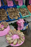 the sale of sea food along the coast of the Celtic Sea. Morning sea food market with oysters royalty free stock photos
