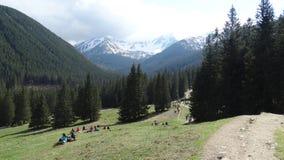 Cancelamento em Zakopane Imagem de Stock Royalty Free