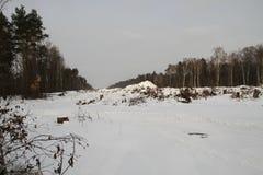 Cancelando na floresta de Khimki, inverno Fotos de Stock