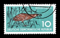 Cancelled postage stamp printed by Germany. That shows Great Bittern, circa 1959 royalty free stock photos