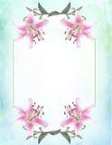 Cancelleria botanica della carta dell'invito incorniciata Tiger Lily del fiore Immagini Stock