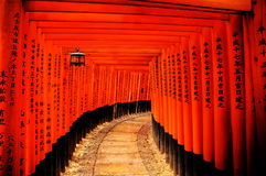 Cancelli di Torii, Giappone immagine stock