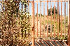 Cancello arrugginito Fotografia Stock Libera da Diritti