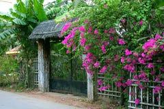 Cancello dei fiori Fotografia Stock