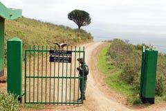 Cancello del cratere di Ngorongoro Fotografie Stock