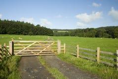 Cancello dell'azienda agricola, distretto del lago, Regno Unito Fotografia Stock Libera da Diritti