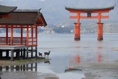 Cancello di galleggiamento di torii Fotografia Stock Libera da Diritti