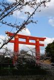 Cancello di torii di Kyoto Fotografie Stock