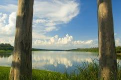 Cancello naturale Fotografia Stock